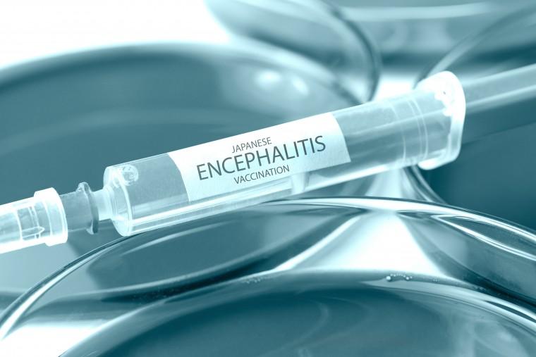 japanese encephalitis vaccination