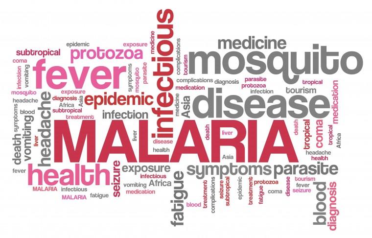 malaria vaccination traveling to india