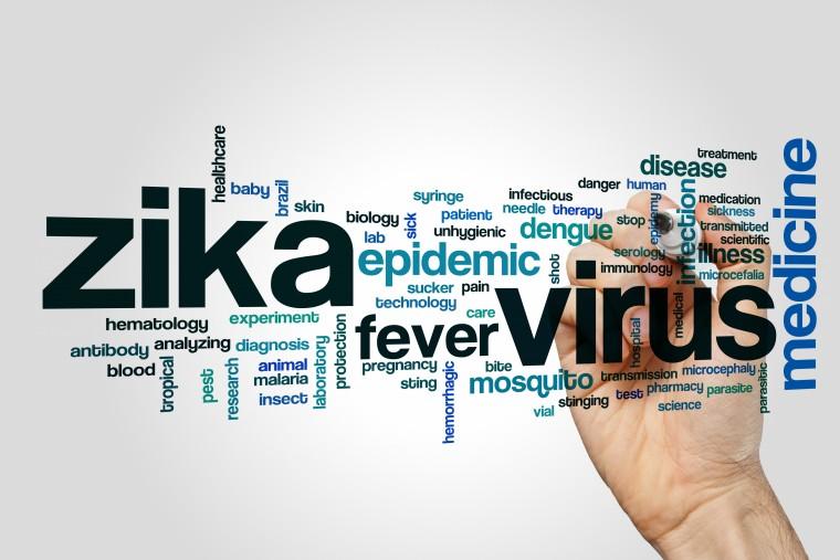 malaria vaccination for brazil